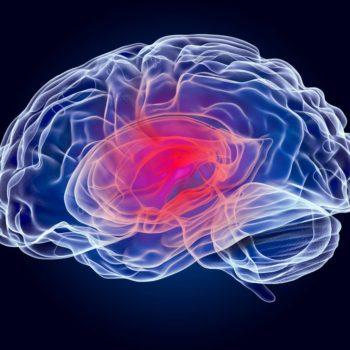 El daño cerebral y sus dificultades