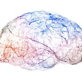 Los ejercicios para la memoria y sus beneficios